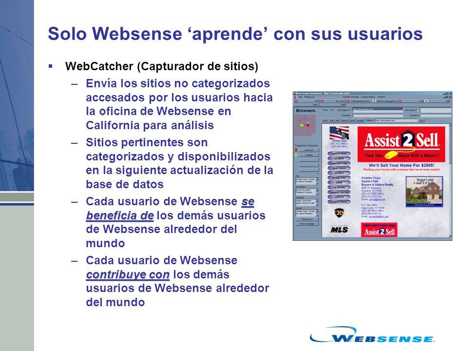 Solo Websense 'aprende' con sus usuarios