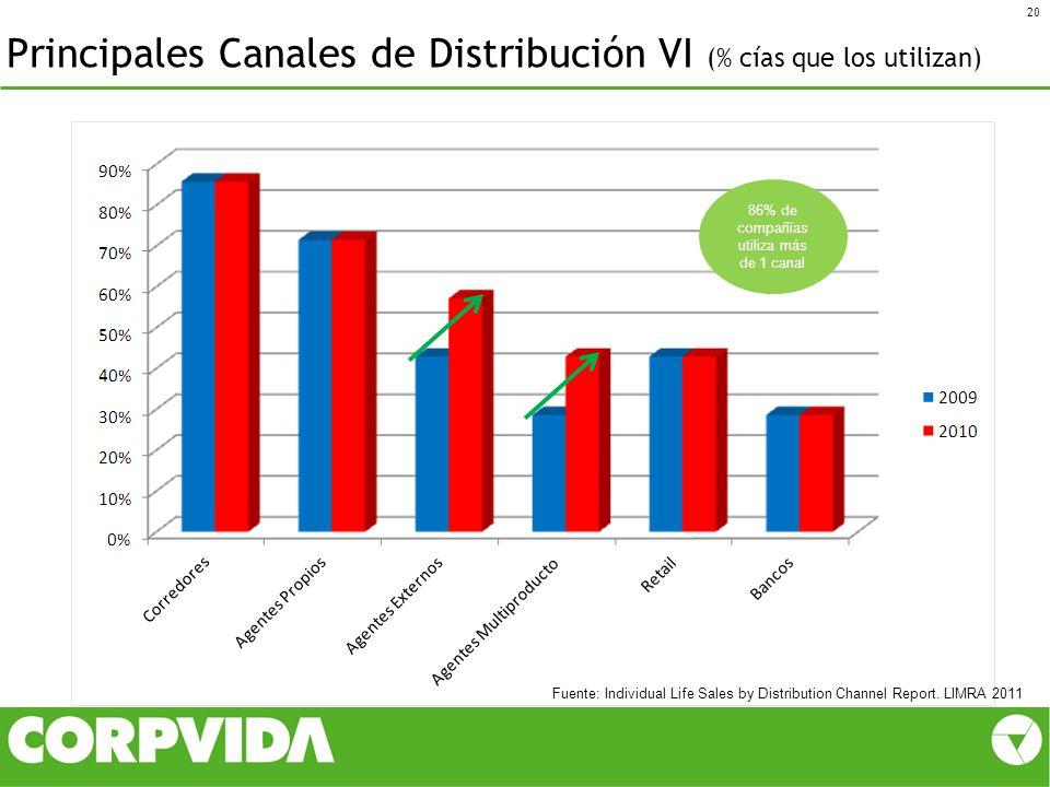 Principales Canales de Distribución VI (% cías que los utilizan)