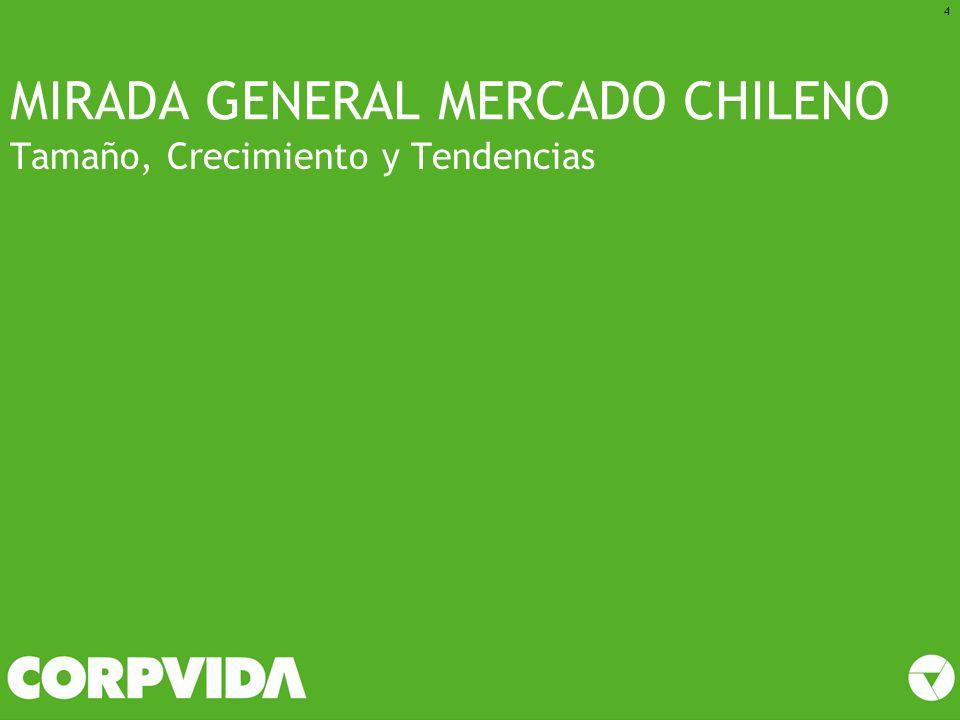 MIRADA GENERAL MERCADO CHILENO