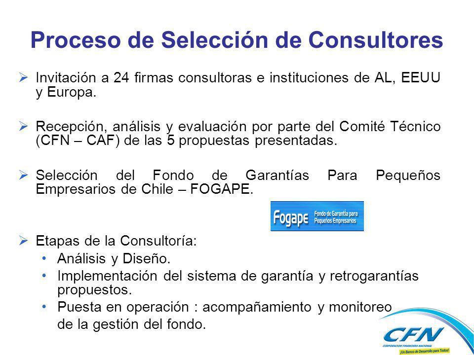 Proceso de Selección de Consultores