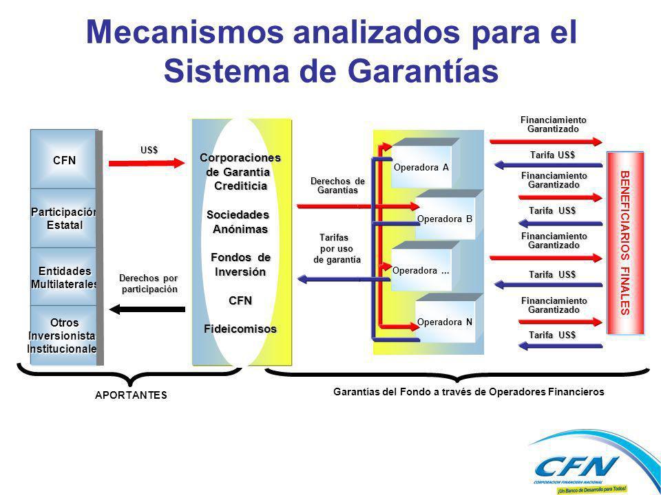 Mecanismos analizados para el Sistema de Garantías