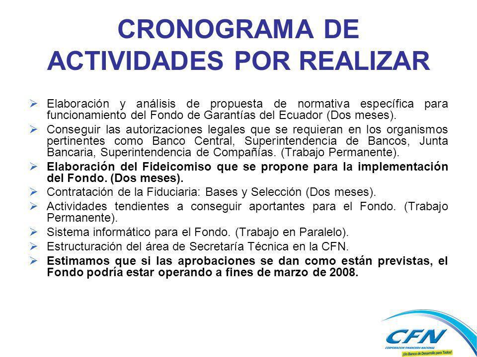 CRONOGRAMA DE ACTIVIDADES POR REALIZAR