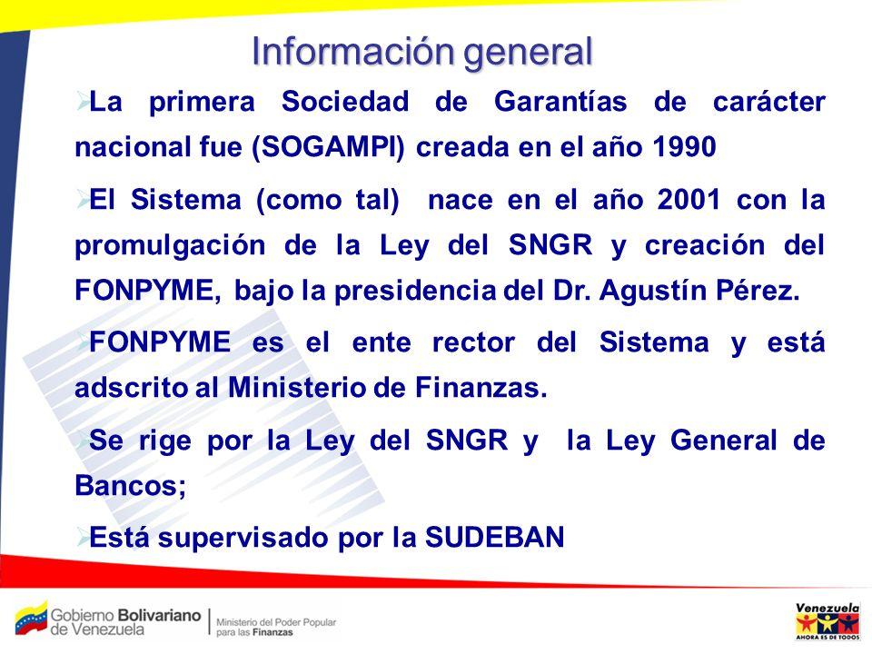 Información general La primera Sociedad de Garantías de carácter nacional fue (SOGAMPI) creada en el año 1990.