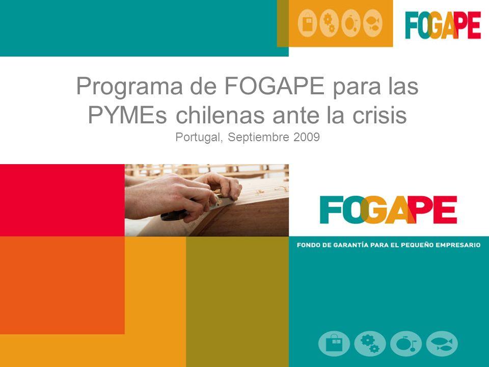 Programa de FOGAPE para las PYMEs chilenas ante la crisis