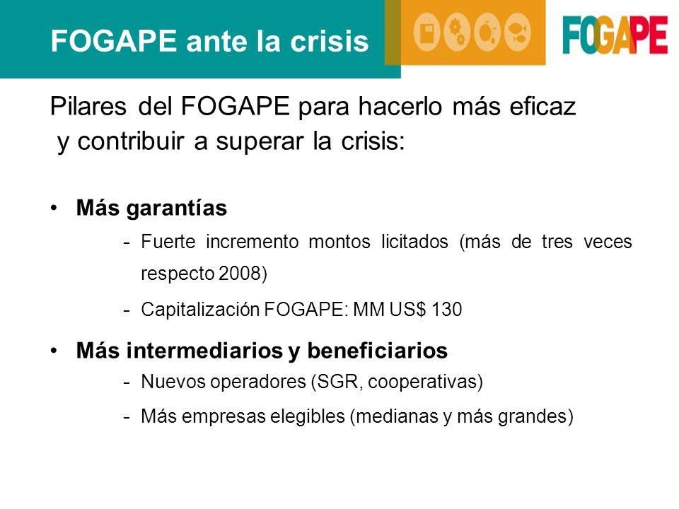 FOGAPE ante la crisis Pilares del FOGAPE para hacerlo más eficaz