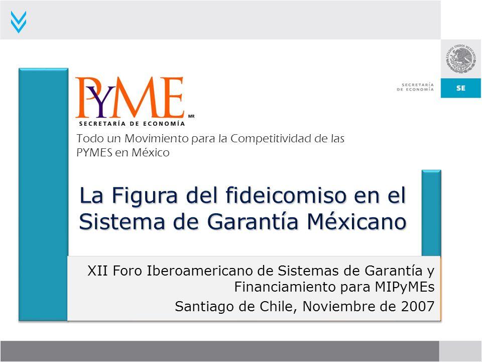 La Figura del fideicomiso en el Sistema de Garantía Méxicano