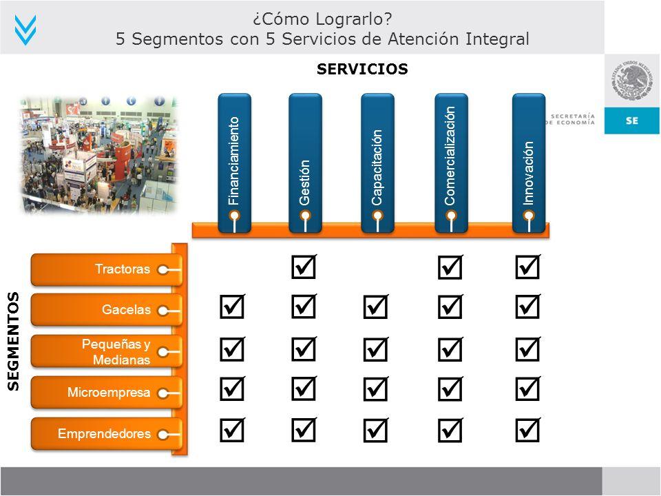 5 Segmentos con 5 Servicios de Atención Integral