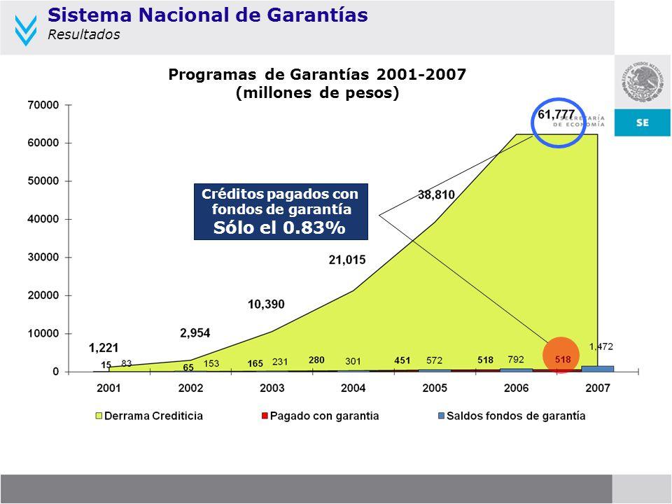 Programas de Garantías 2001-2007