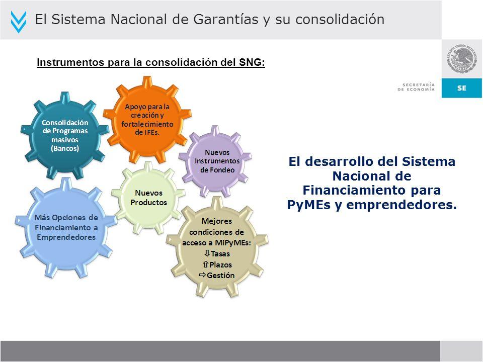 Instrumentos para la consolidación del SNG: