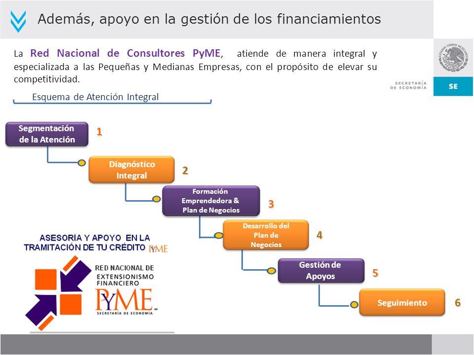 Además, apoyo en la gestión de los financiamientos