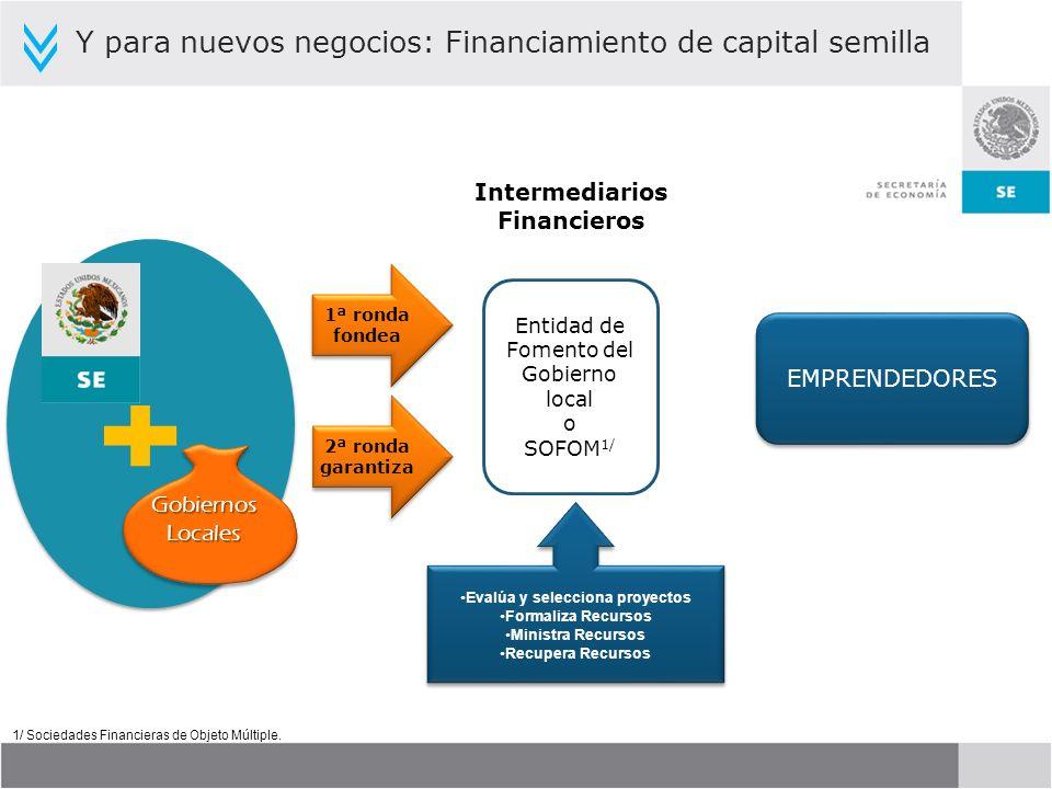 Intermediarios Financieros Evalúa y selecciona proyectos