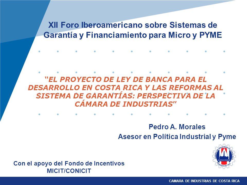 Pedro A. Morales Asesor en Política Industrial y Pyme