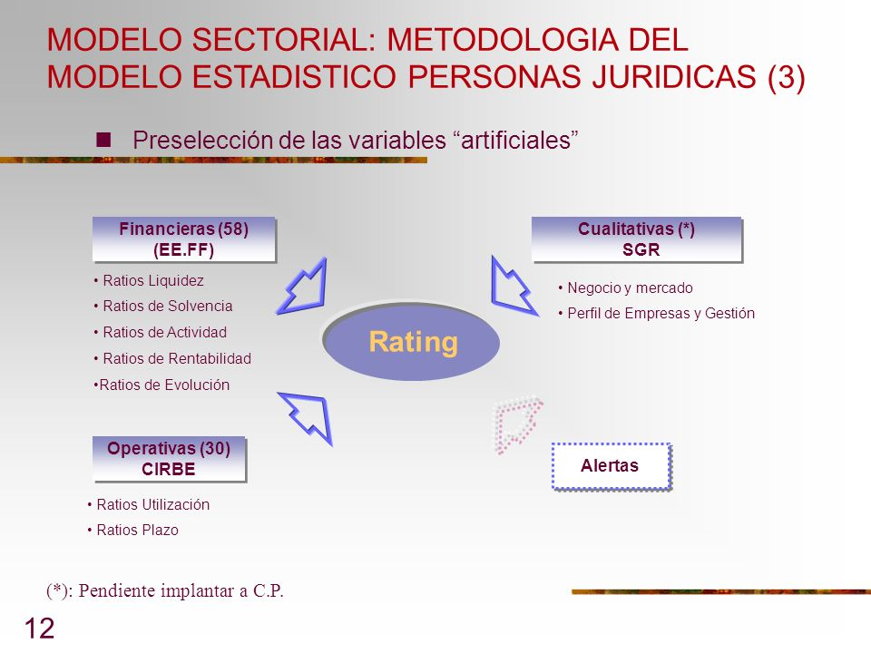 MODELO SECTORIAL: METODOLOGIA DEL MODELO ESTADISTICO PERSONAS JURIDICAS (3)