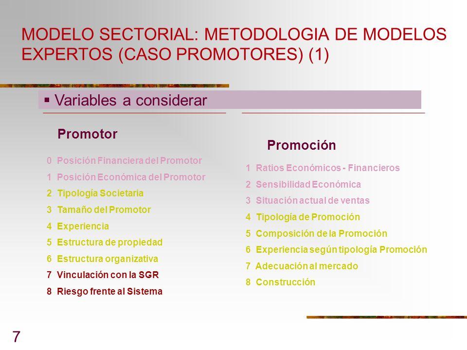 MODELO SECTORIAL: METODOLOGIA DE MODELOS EXPERTOS (CASO PROMOTORES) (1)