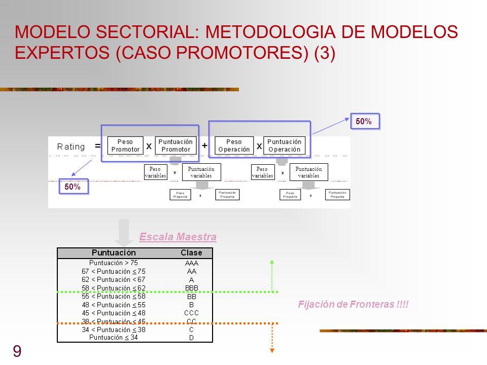 MODELO SECTORIAL: METODOLOGIA DE MODELOS EXPERTOS (CASO PROMOTORES) (3)