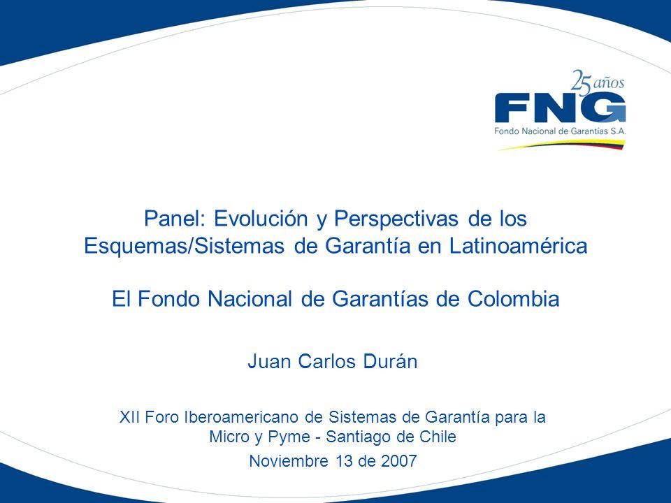 Panel: Evolución y Perspectivas de los Esquemas/Sistemas de Garantía en Latinoamérica El Fondo Nacional de Garantías de Colombia