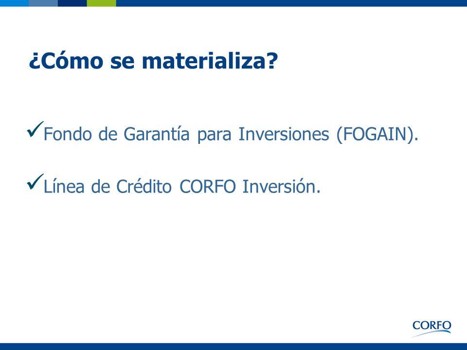 ¿Cómo se materializa Fondo de Garantía para Inversiones (FOGAIN).