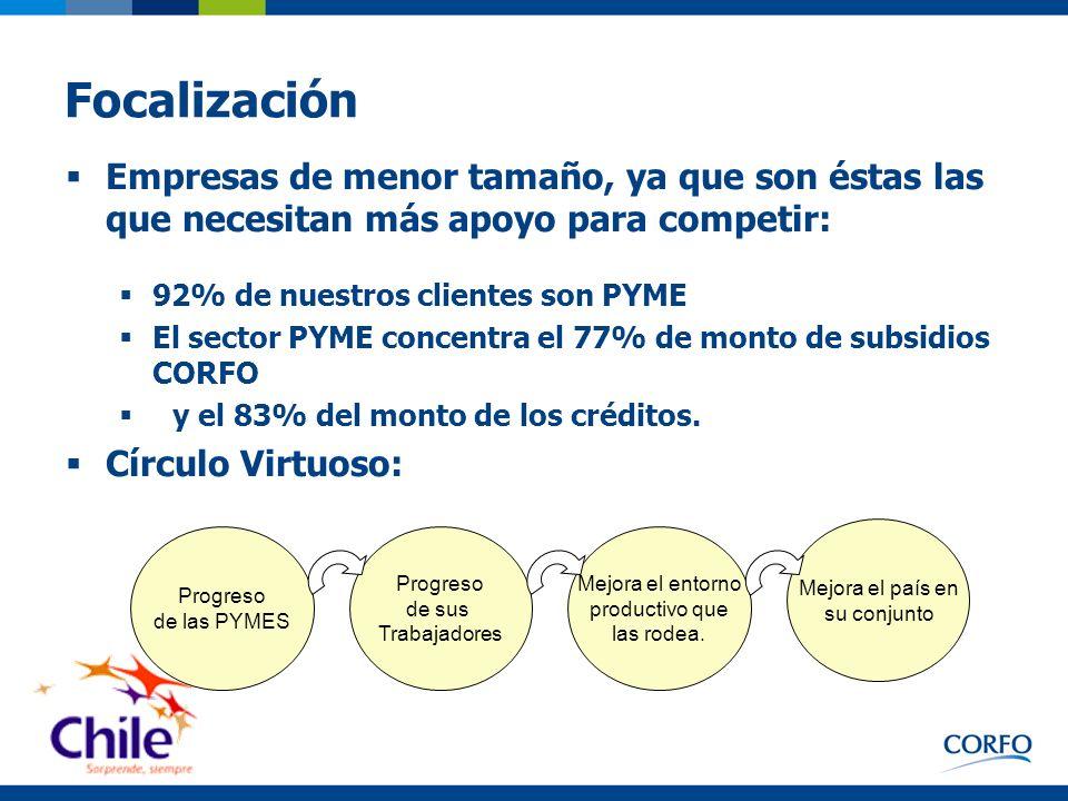Focalización Empresas de menor tamaño, ya que son éstas las que necesitan más apoyo para competir: 92% de nuestros clientes son PYME.