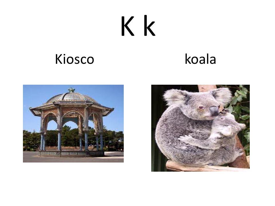 K k Kiosco koala