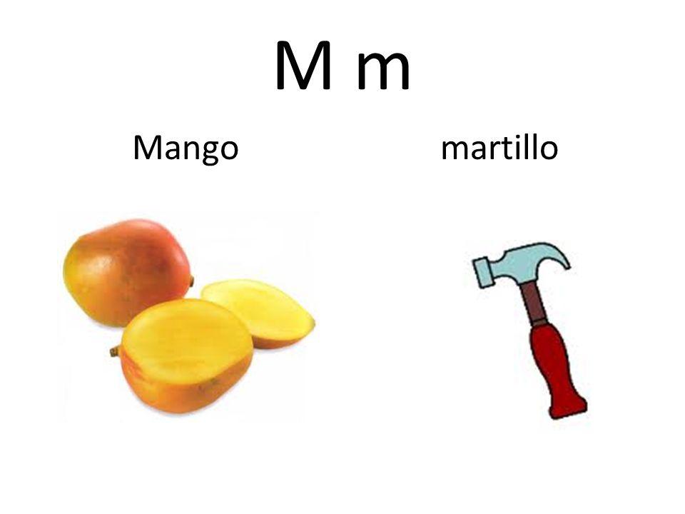 M m Mango martillo