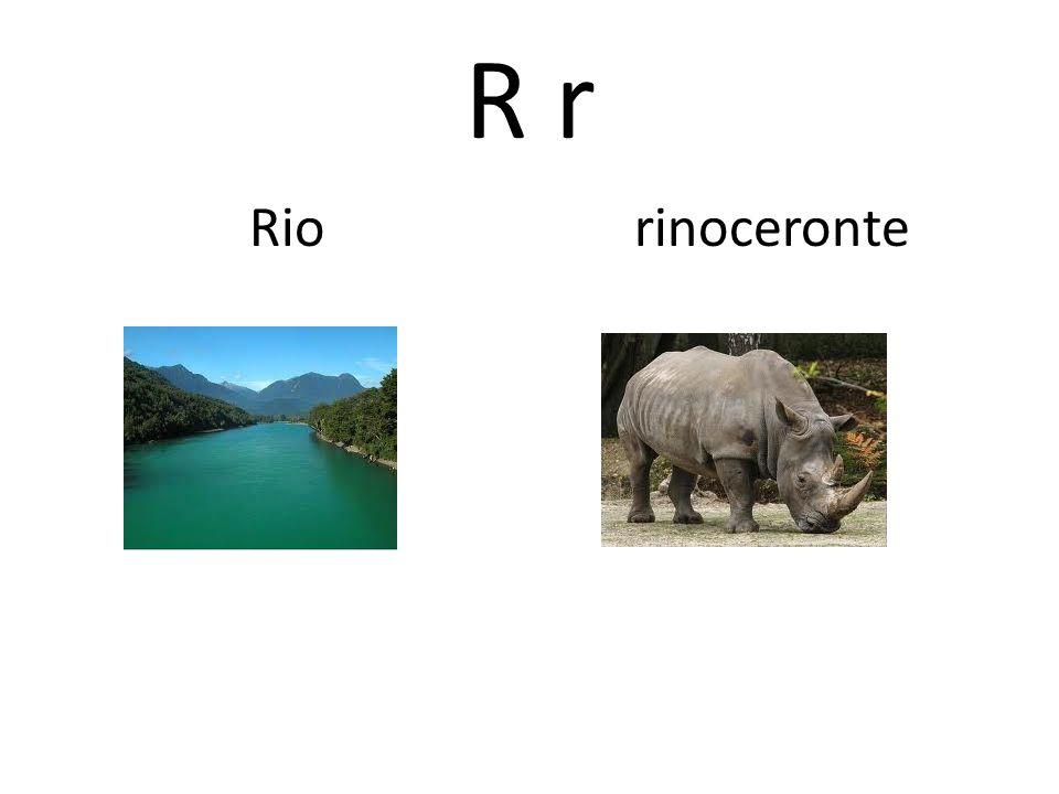R r Rio rinoceronte