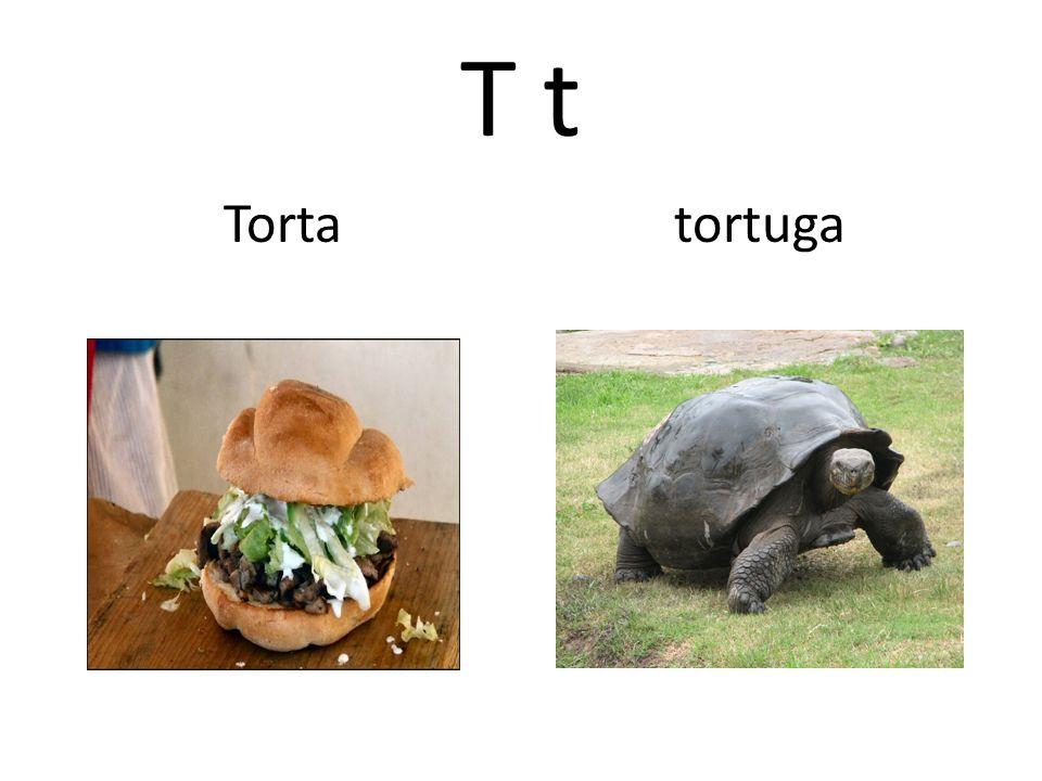T t Torta tortuga