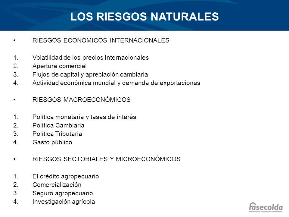 LOS RIESGOS NATURALES RIESGOS ECONÓMICOS INTERNACIONALES