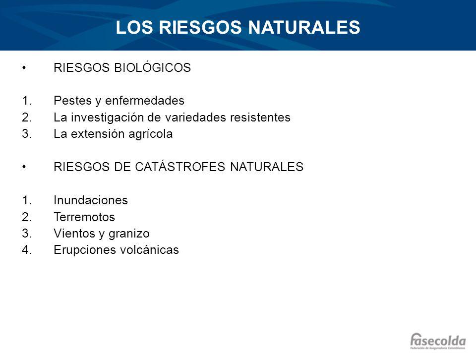 LOS RIESGOS NATURALES RIESGOS BIOLÓGICOS Pestes y enfermedades