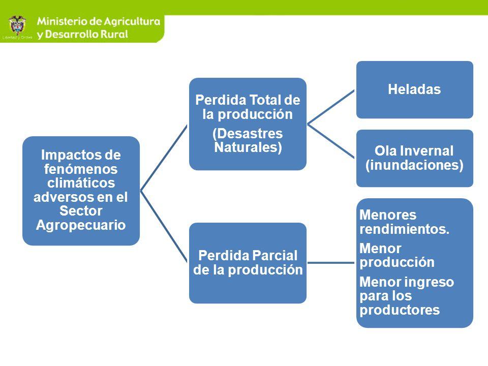 Impactos de fenómenos climáticos adversos en el Sector Agropecuario