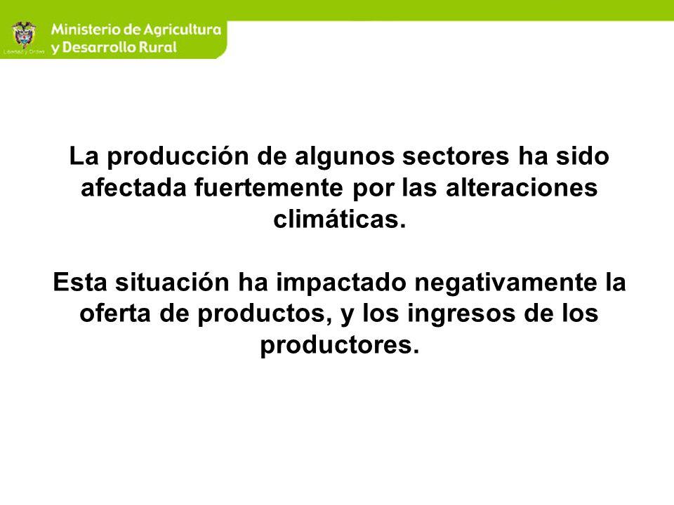 La producción de algunos sectores ha sido afectada fuertemente por las alteraciones climáticas.