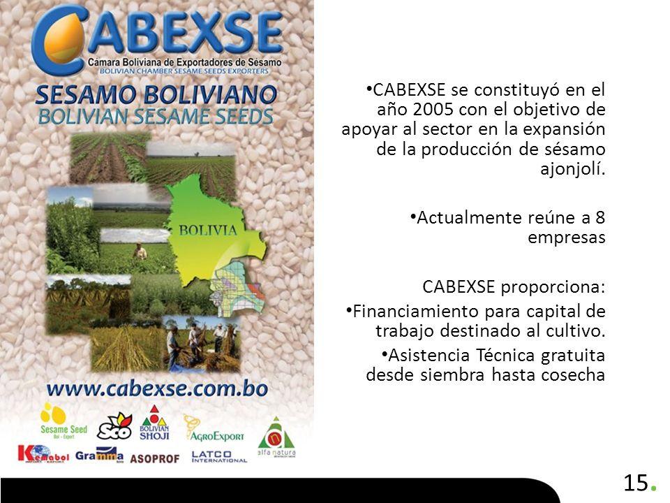 CABEXSE se constituyó en el año 2005 con el objetivo de apoyar al sector en la expansión de la producción de sésamo ajonjolí.