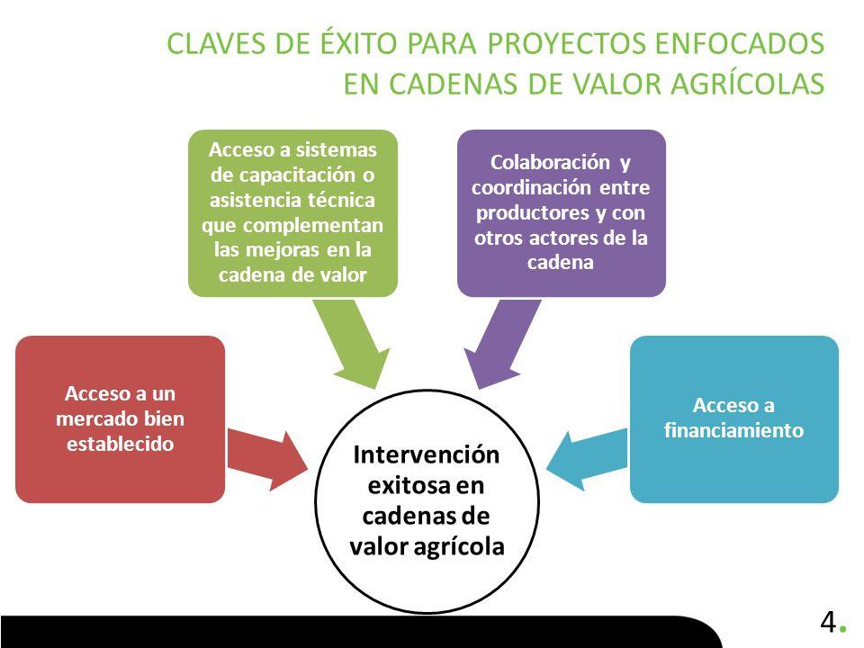 Claves de éxito para proyectos enfocados en cadenas de valor agrícolas