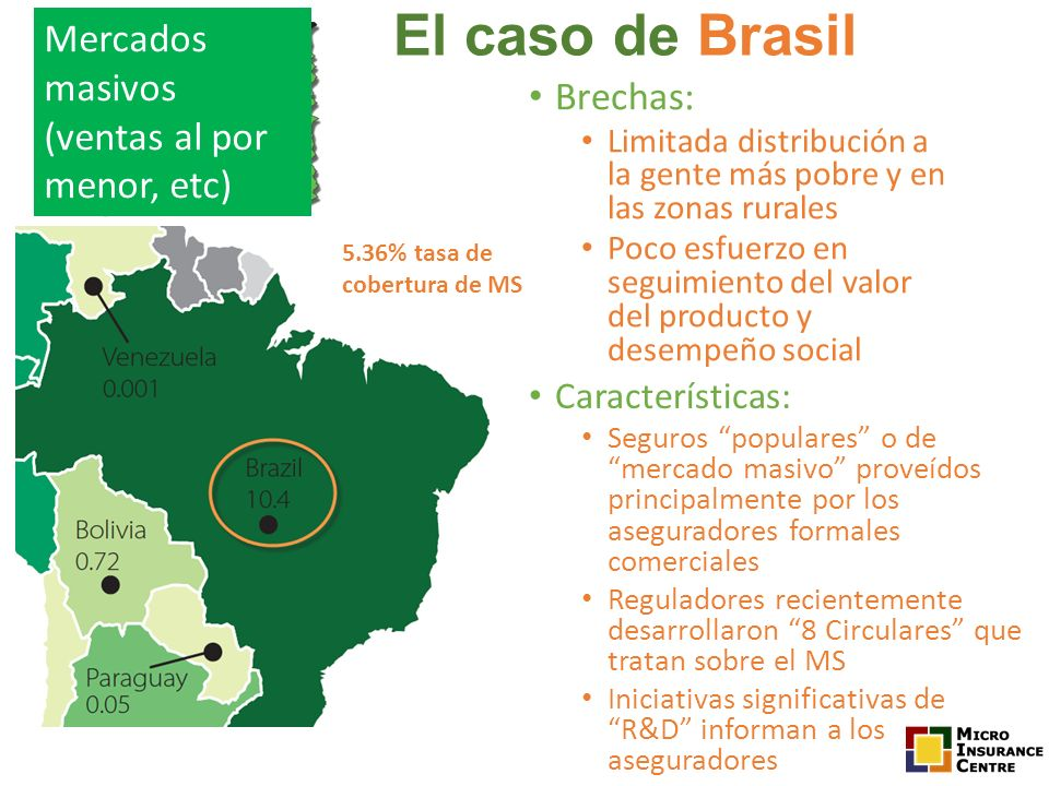 El caso de Brasil Mercados masivos (ventas al por menor, etc) Brechas: