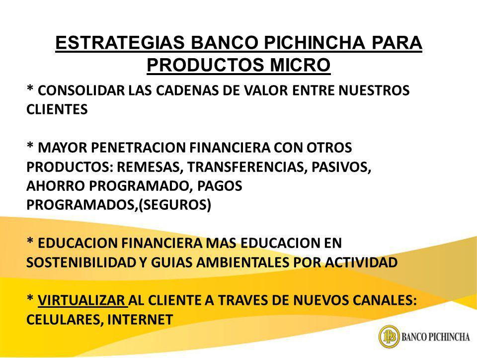 ESTRATEGIAS BANCO PICHINCHA PARA PRODUCTOS MICRO