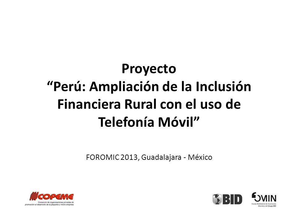 FOROMIC 2013, Guadalajara - México
