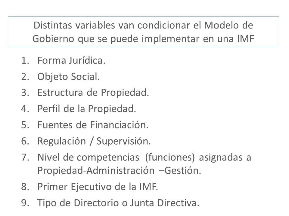 Distintas variables van condicionar el Modelo de Gobierno que se puede implementar en una IMF