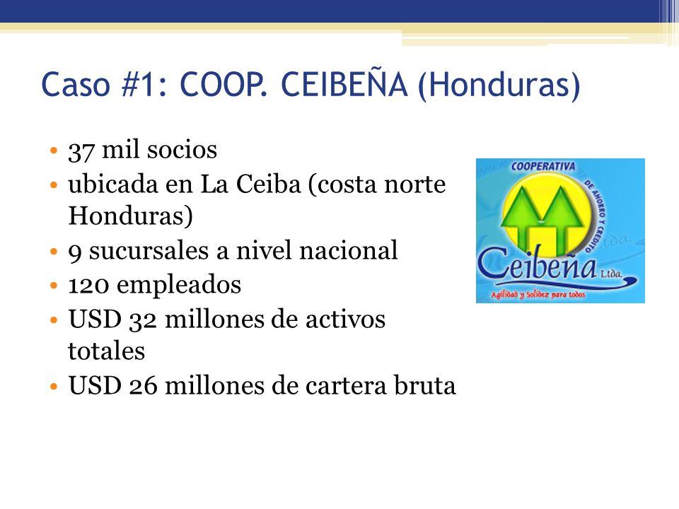 Caso #1: COOP. CEIBEÑA (Honduras)