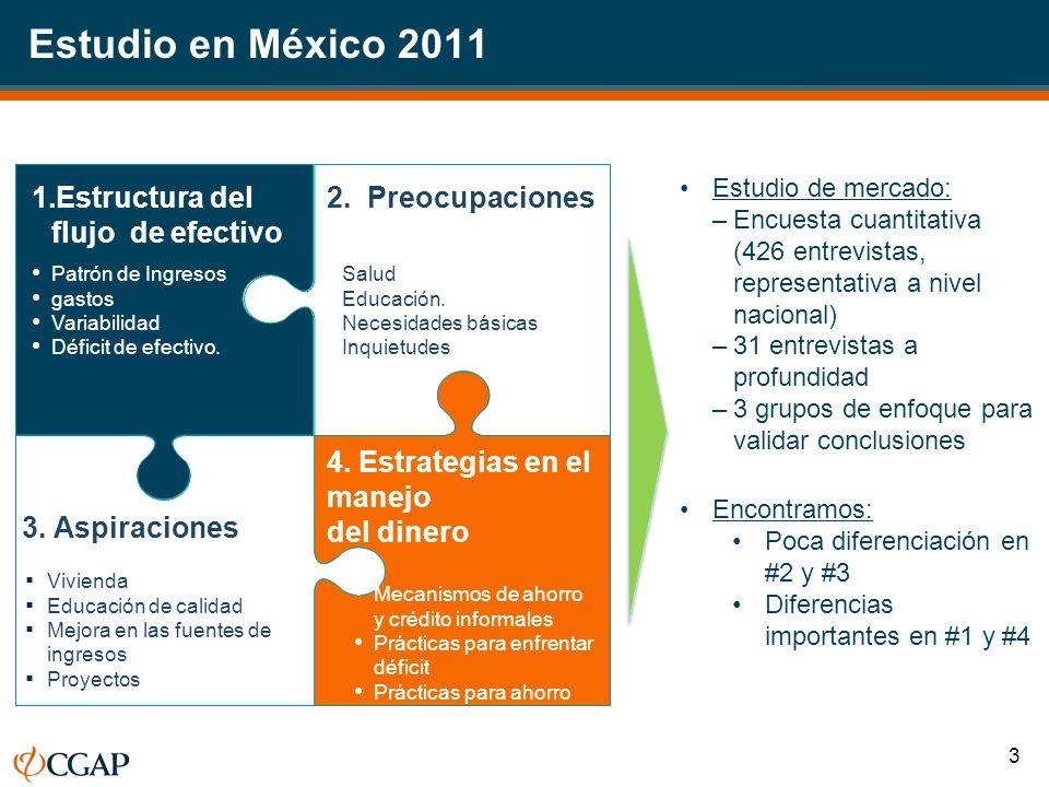 Estudio en México 2011 Estructura del flujo de efectivo