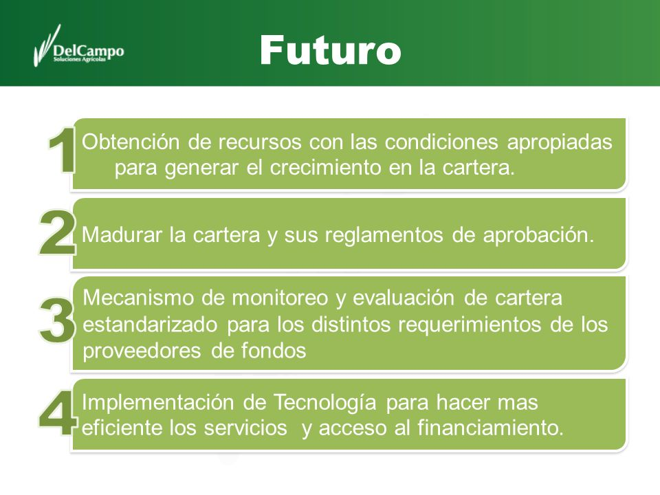 Futuro 1. Obtención de recursos con las condiciones apropiadas para generar el crecimiento en la cartera.