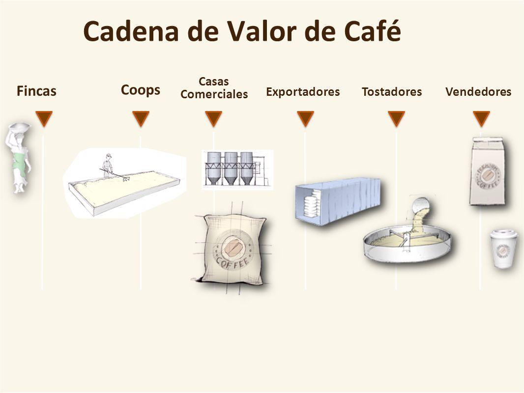 Cadena de Valor de Café Fincas Coops