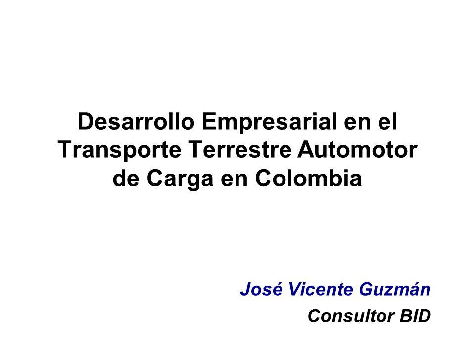José Vicente Guzmán Consultor BID