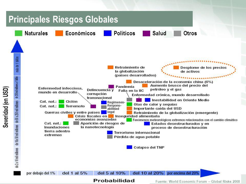 Principales Riesgos Globales
