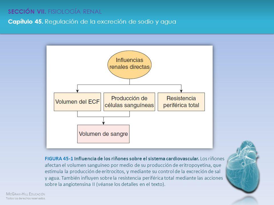FIGURA 45-1 Influencia de los riñones sobre el sistema cardiovascular