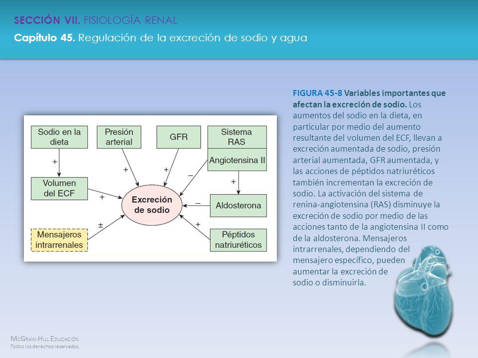 FIGURA 45-8 Variables importantes que afectan la excreción de sodio