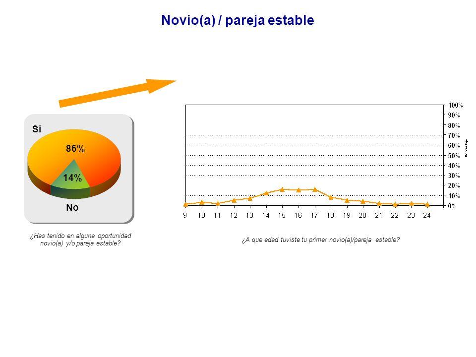 Novio(a) / pareja estable