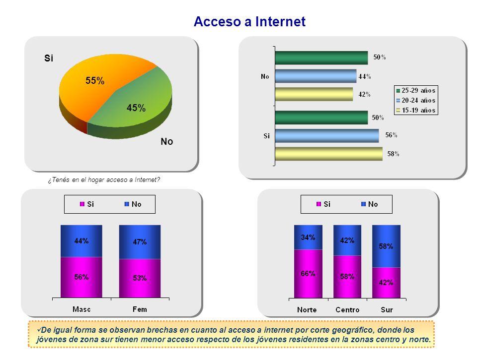 Acceso a Internet Si 55% 45% No