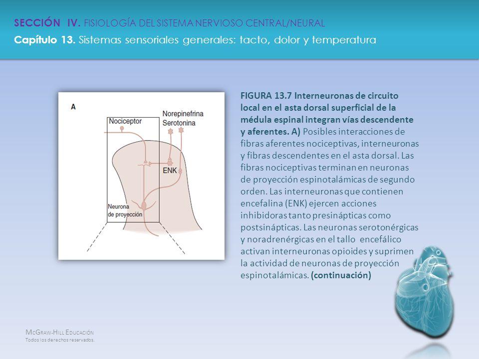 SECCIÓN IV. FISIOLOGÍA DEL SISTEMA NERVIOSO CENTRAL/NEURAL