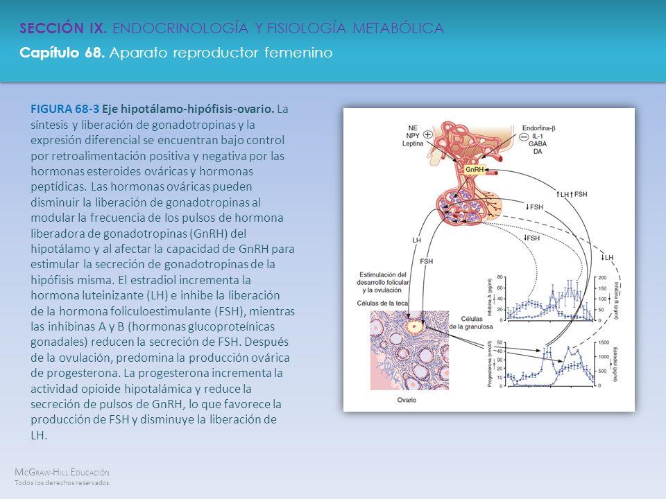 FIGURA 68-3 Eje hipotálamo-hipófisis-ovario
