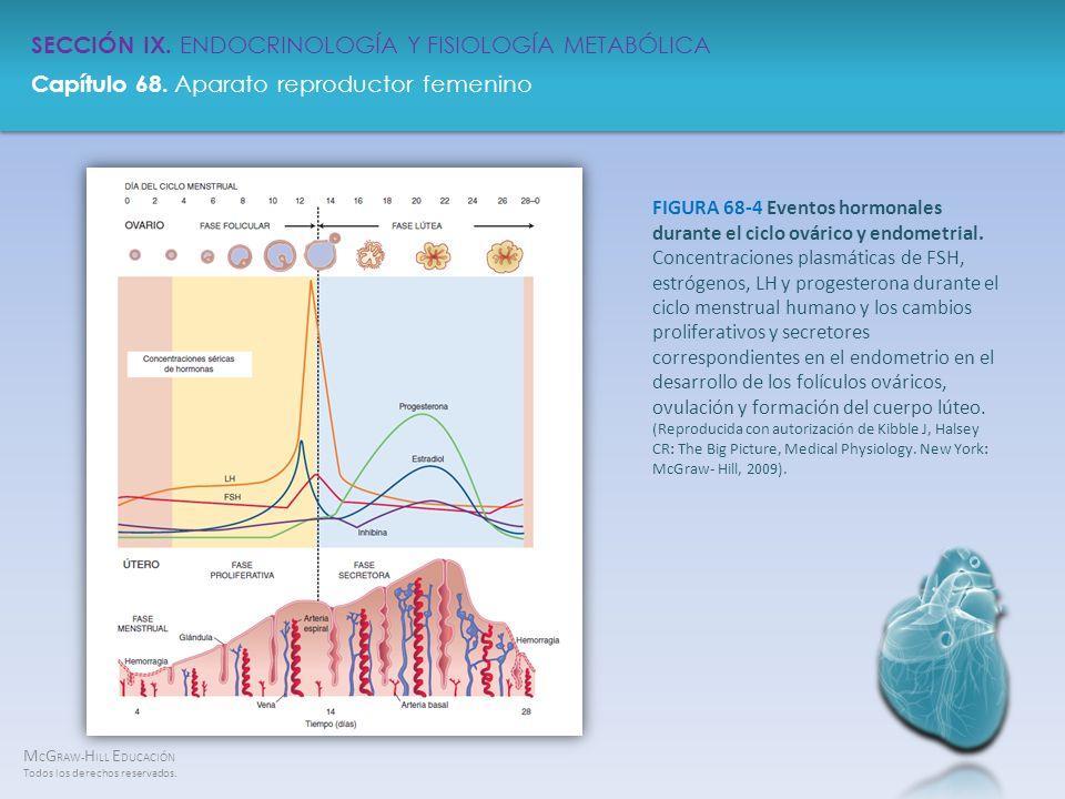 FIGURA 68-4 Eventos hormonales durante el ciclo ovárico y endometrial