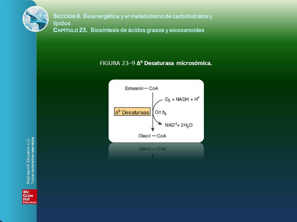 FIGURA 23–9 Δ9 Desaturasa microsómica.